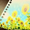 真夏の花 プリ画像