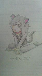 Black Dogの画像(Jimmyに関連した画像)
