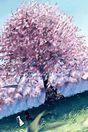 桜 背景 高画質 和柄 プリ画像