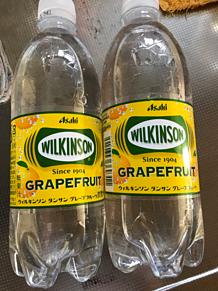 ウィルキンソン 炭酸 グレープフルーツの画像(グレープフルーツに関連した画像)