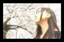 SKE48 松井玲奈 ゲキカラ 甘口の画像(甘口に関連した画像)