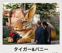 ボケての画像(タイガー&バニーに関連した画像)