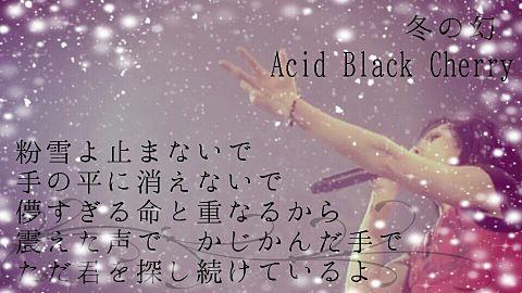 Acid Black Cherry /冬の幻の画像(プリ画像)