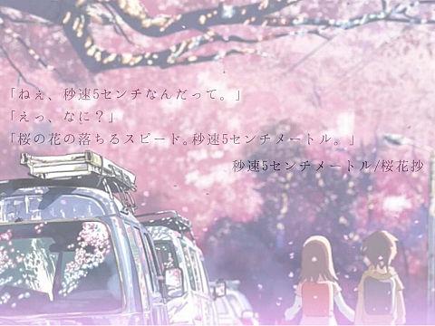 秒速5センチメートル〜篠原明里&遠野貴樹〜の画像(プリ画像)