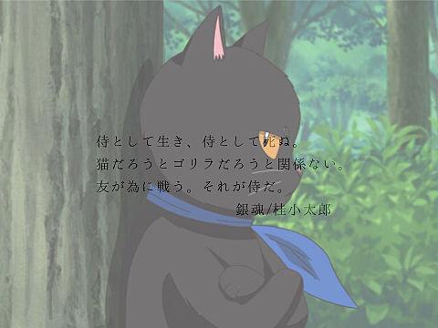 銀魂〜桂小太郎〜の画像 プリ画像