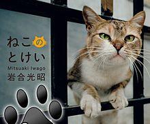 岩合さんの猫写真が1,400枚超?猫好きに贈る時計アプリ『岩合光昭のねこのとけい』の画像(プリ画像)