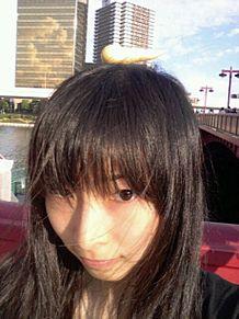 SKE48 大矢真那の画像(プリ画像)