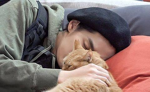 Krisと猫の画像(プリ画像)