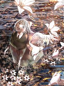 今日は贈ろう、白花を君に プリ画像