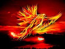 #幻想ファンタジー#幻想的#火の鳥の画像(幻獣に関連した画像)