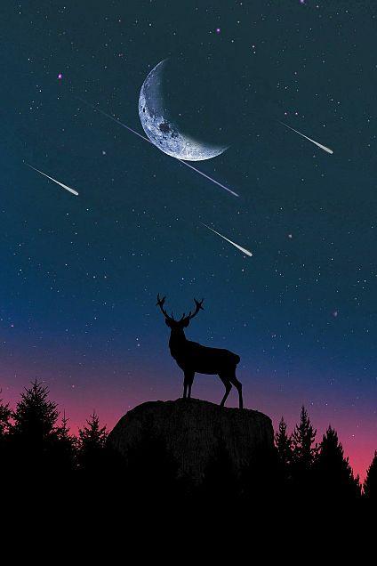 #幻想ファンタジー#月#流れ星#鹿#素材#壁紙の画像(プリ画像)