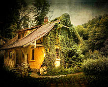 #幻想的#森#フォレスト#家の画像(幻想的に関連した画像)