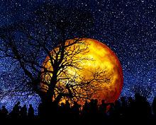 #幻想ファンタジー#幻想的#満月 プリ画像