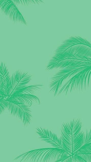 Phones WP Hawaiianの画像(プリ画像)