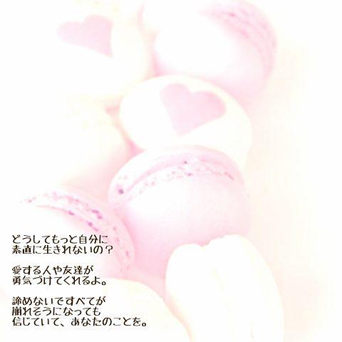 今井美樹の画像 プリ画像