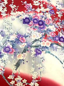 和柄 素材 花柄 桜 梅の画像(花柄に関連した画像)