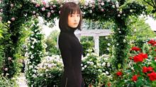 広瀬すず ♡☆♡ カッコイイ女の画像(イイ女に関連した画像)