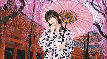 乃木坂46 齋藤飛鳥 ♡☂♡ ~ 和傘美人 ~ 京都の画像(京都に関連した画像)