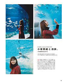小坂菜緒 欅坂46 けやき坂46 日向坂46 メンズノンノの画像(メンズに関連した画像)