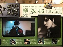 長濱ねる 欅坂46 卒業パネル展 平手友梨奈 黒い羊の画像(黒い羊に関連した画像)