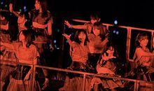 7thyearbirthdaylive 西野七瀬 乃木坂46の画像(大園桃子 白石麻衣に関連した画像)