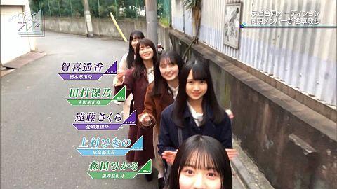 坂道 テレビ