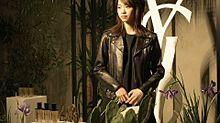 西野七瀬 乃木坂46 なーちゃん YSLの画像(#yslに関連した画像)