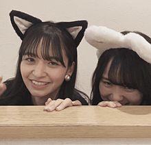 賀喜遥香 乃木坂46 猫の日 金川紗耶 プリ画像