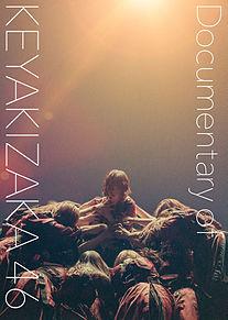 欅坂46 平手友梨奈 ドキュメンタリーの画像(菅井友香に関連した画像)