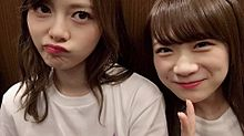 乃木坂46   東京ドーム 白石麻衣 秋元真夏の画像(東京ドームに関連した画像)