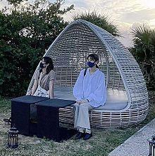 西野七瀬 乃木坂46  伊藤かりん insの画像(伊藤かりんに関連した画像)