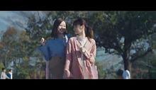 西野七瀬 乃木坂46 白石麻衣 スーパードライの画像(スーパーに関連した画像)