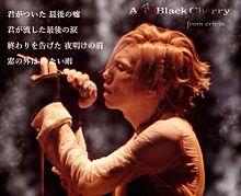 Acid Black Cherry yasu 歌詞画の画像(acid black cherryに関連した画像)