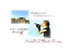 Maria歌詞画の画像(acid black cherryに関連した画像)