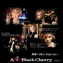 黒猫~Adult Black Cat~の画像(acid black cherryに関連した画像)