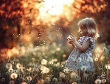 素材 女の子 可愛い 森ガール 花の画像(素材 女の子 外国人 外国 夕日 おしゃれに関連した画像)