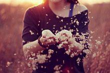 素材 待ち受け 壁紙 原画 女の子 花の画像(素材 女の子 外国人 外国 夕日 おしゃれに関連した画像)