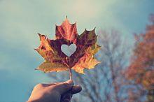 heartの画像(もんどどに関連した画像)