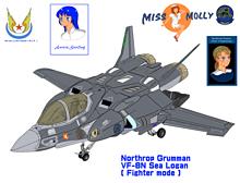 軽・可変・艦上戦闘機 VF-8N シー・ローガンの画像(戦闘に関連した画像)