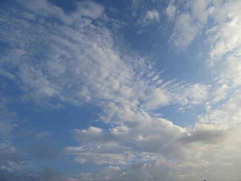空が好きです。の画像 プリ画像