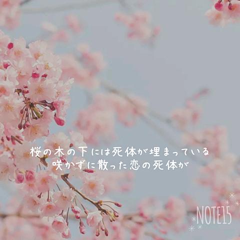 桜の木の下にはの画像(プリ画像)